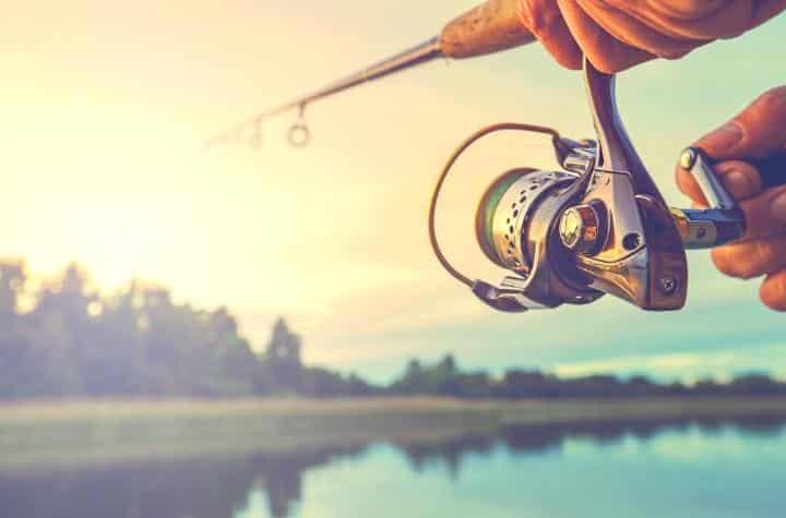 Fishing in 2020