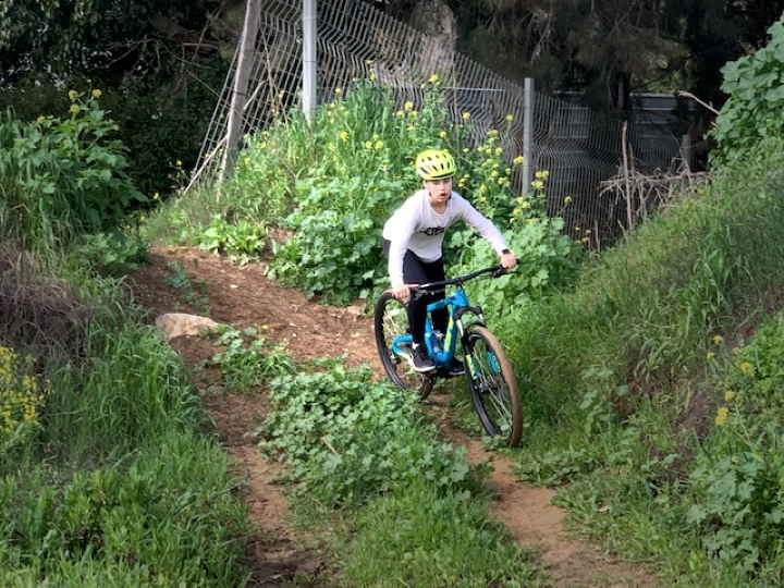 Girl on a bicycle going down a hill