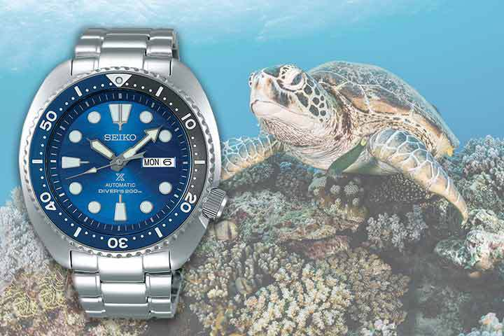 Seiko Prospex Turtle Save The Ocean with turtle background